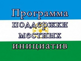 Об участии в ППМИ -2017